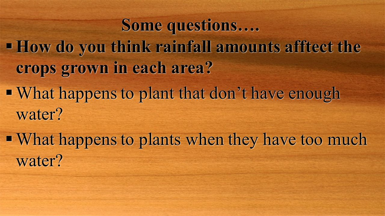 Some questions…. How do you think rainfall amounts afftect the crops grown in each area What happens to plant that don't have enough water