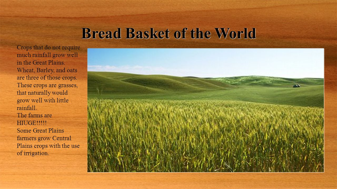 Bread Basket of the World