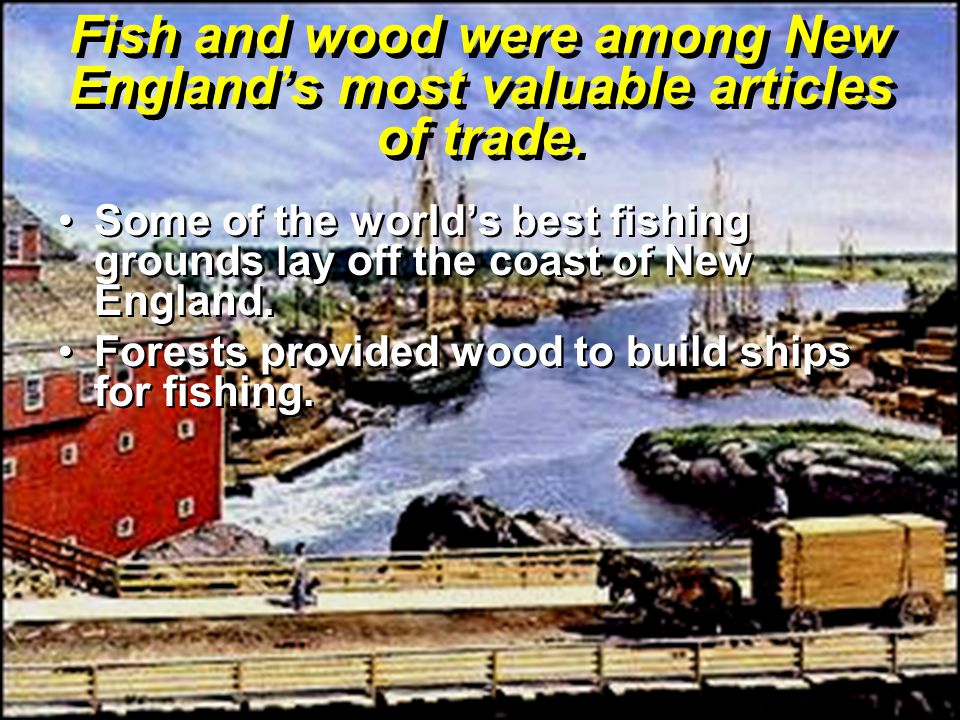 Fish and wood were among New England's most valuable articles of trade.