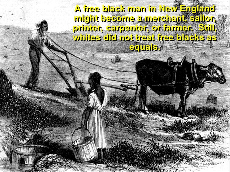 A free black man in New England might become a merchant, sailor, printer, carpenter, or farmer.