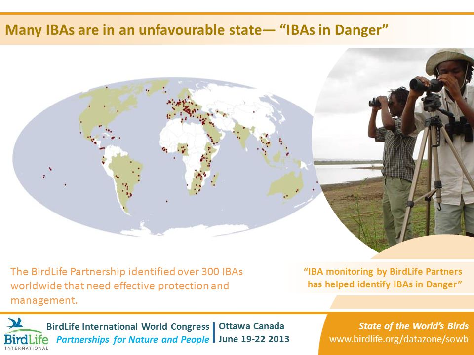 Many IBAs are in an unfavourable state— IBAs in Danger