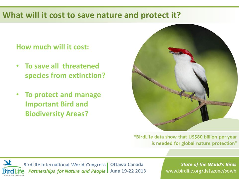 What will it cost to save nature and protect it