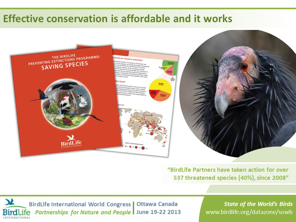 Effective conservation is affordable and it works
