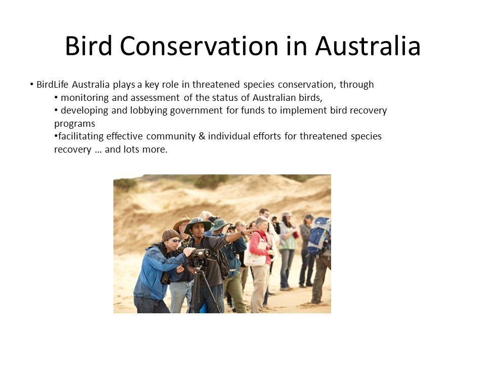 Bird Conservation in Australia