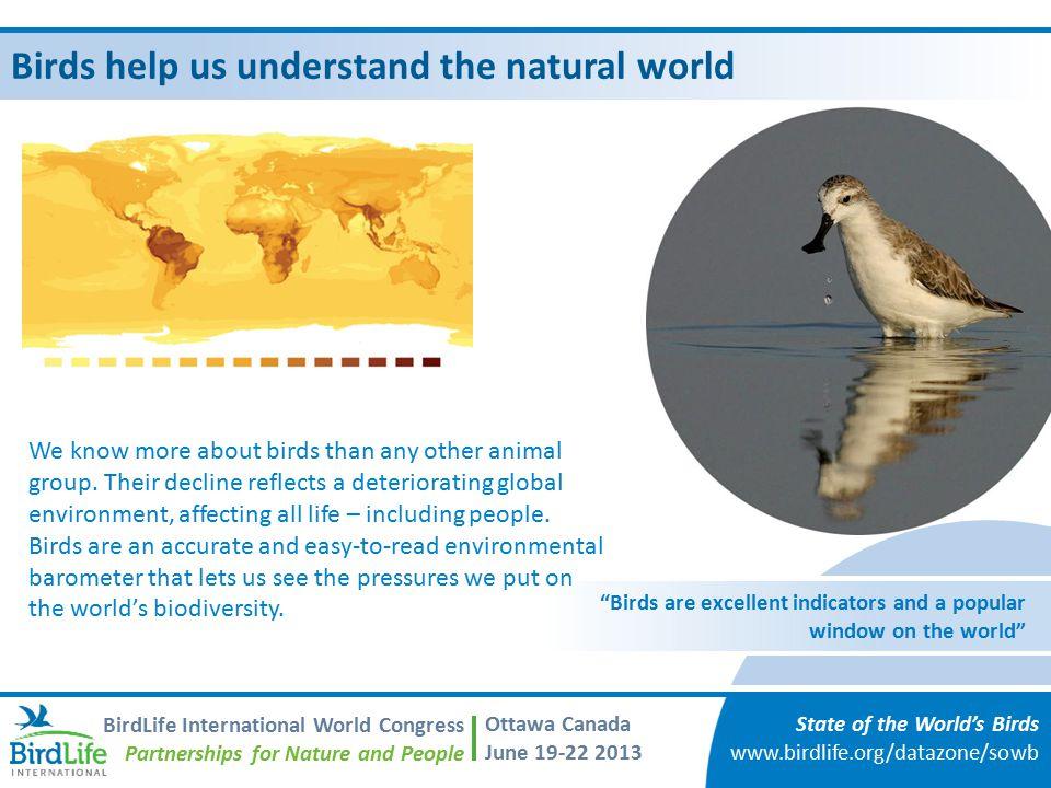 Birds help us understand the natural world