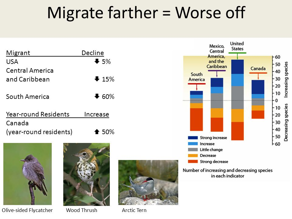 Migrate farther = Worse off