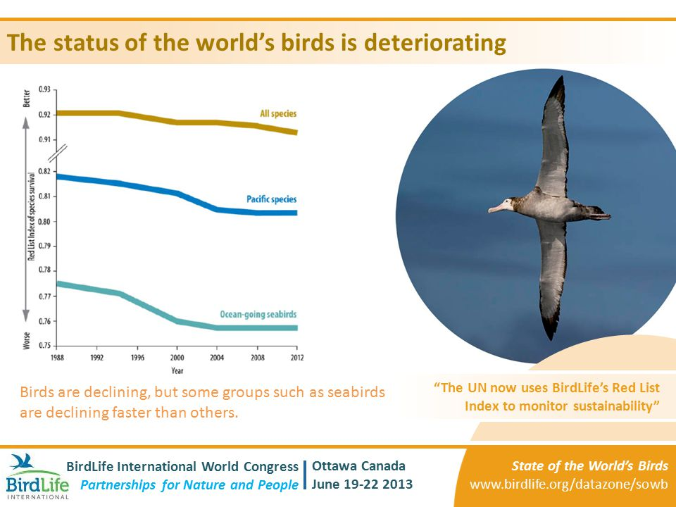 The status of the world's birds is deteriorating