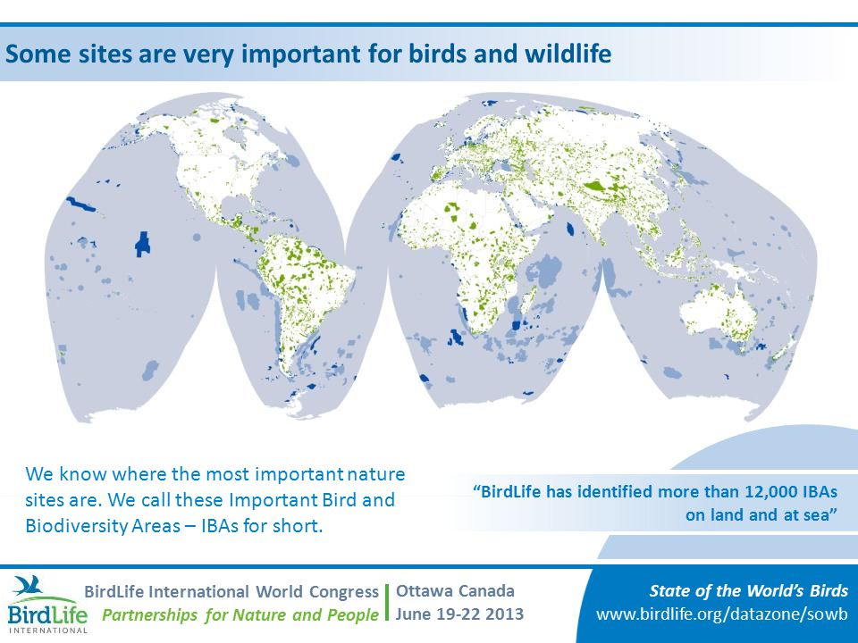 Some sites are very important for birds and wildlife