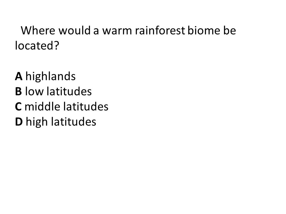 Where would a warm rainforest biome be located