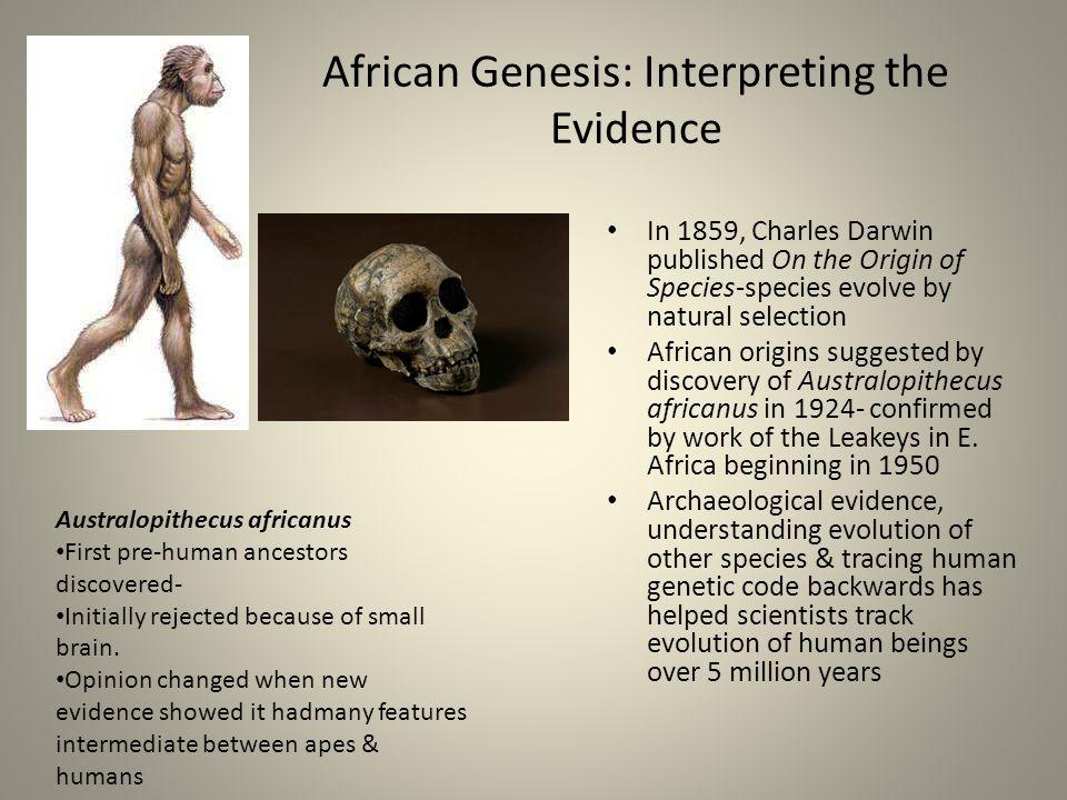 African Genesis: Interpreting the Evidence