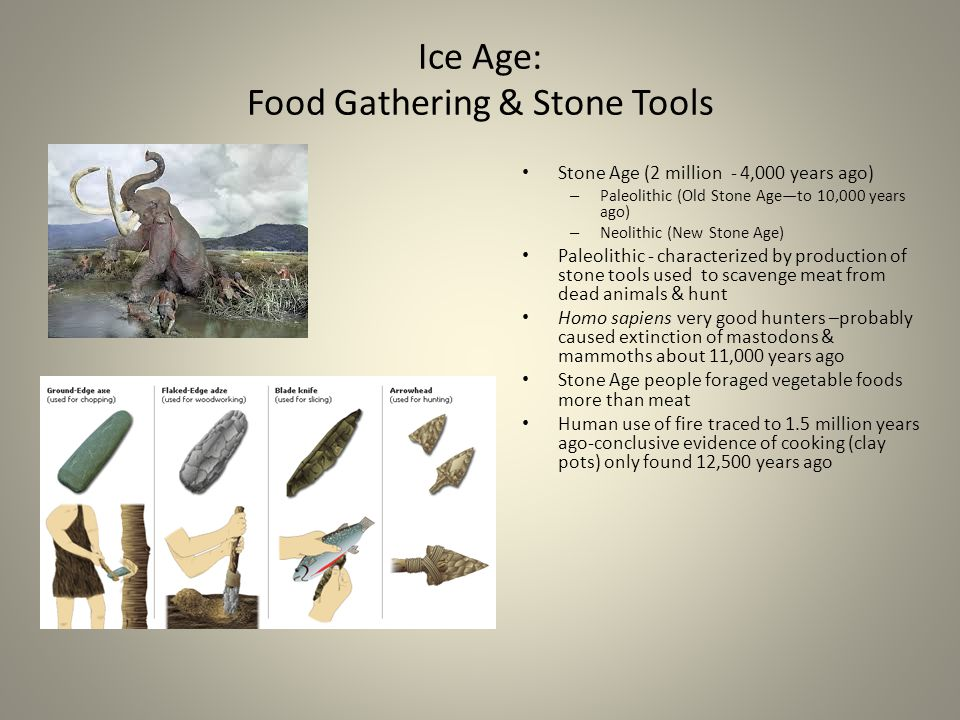 Ice Age: Food Gathering & Stone Tools