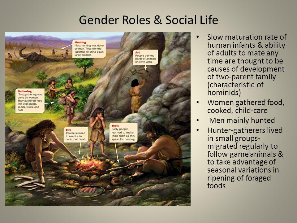 Gender Roles & Social Life
