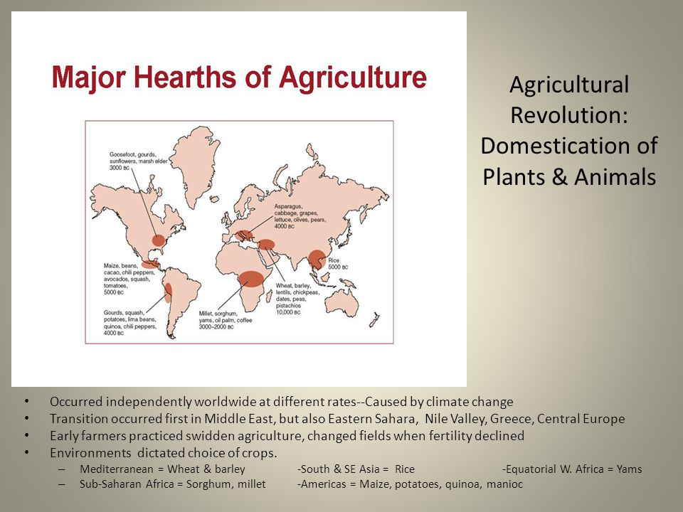 Agricultural Revolution: Domestication of Plants & Animals