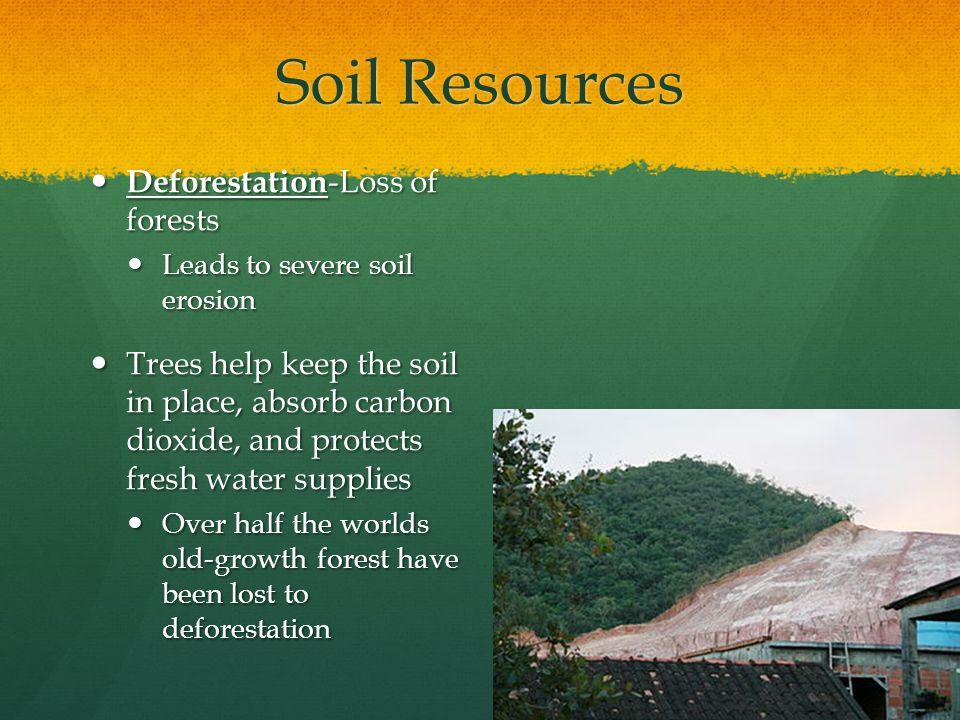 Soil Resources Deforestation-Loss of forests