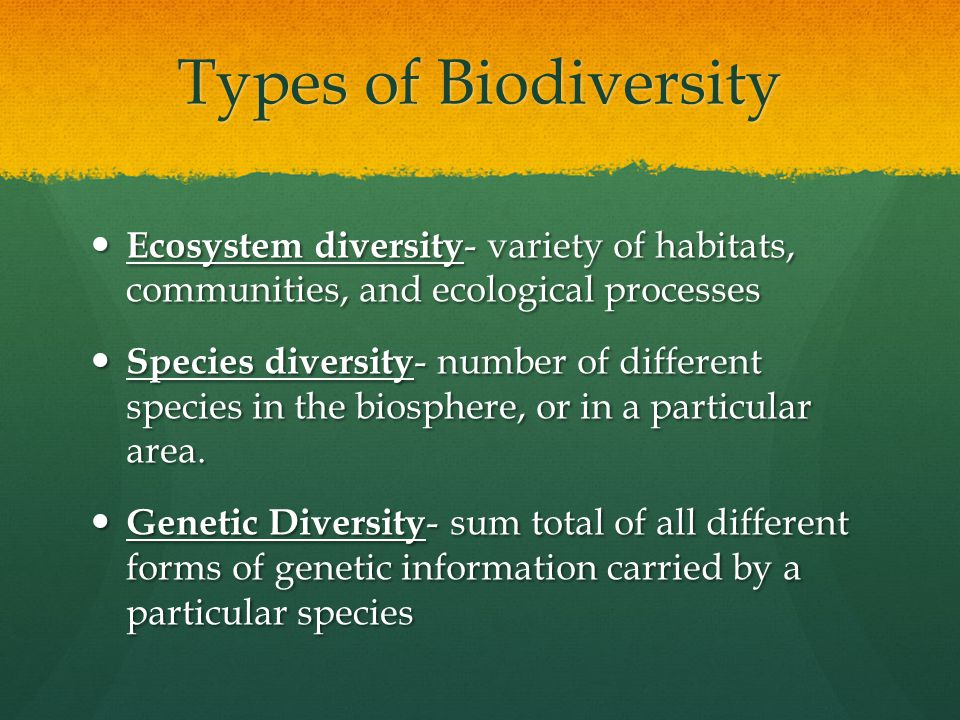 Types of Biodiversity Ecosystem diversity- variety of habitats, communities, and ecological processes.