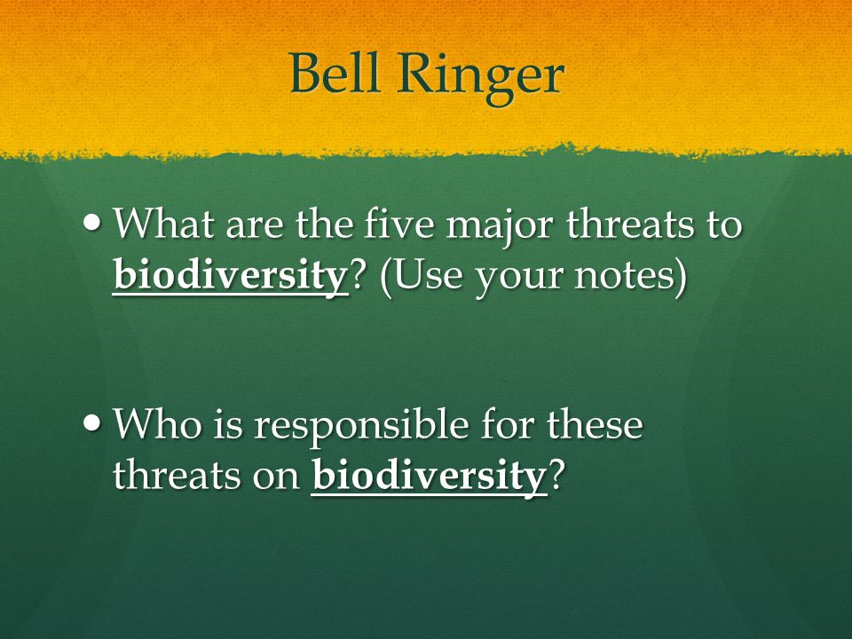 Bell Ringer What are the five major threats to biodiversity.