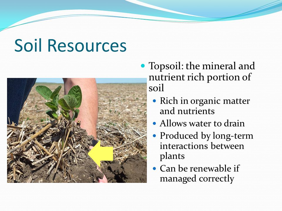 Soil Resources Topsoil: the mineral and nutrient rich portion of soil