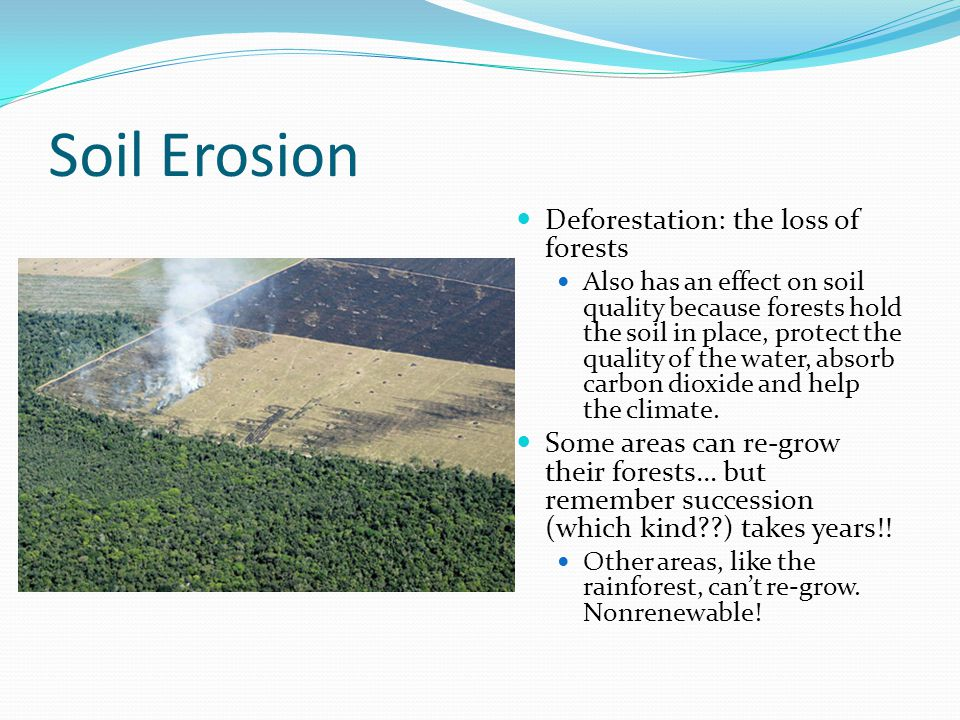 Soil Erosion Deforestation: the loss of forests