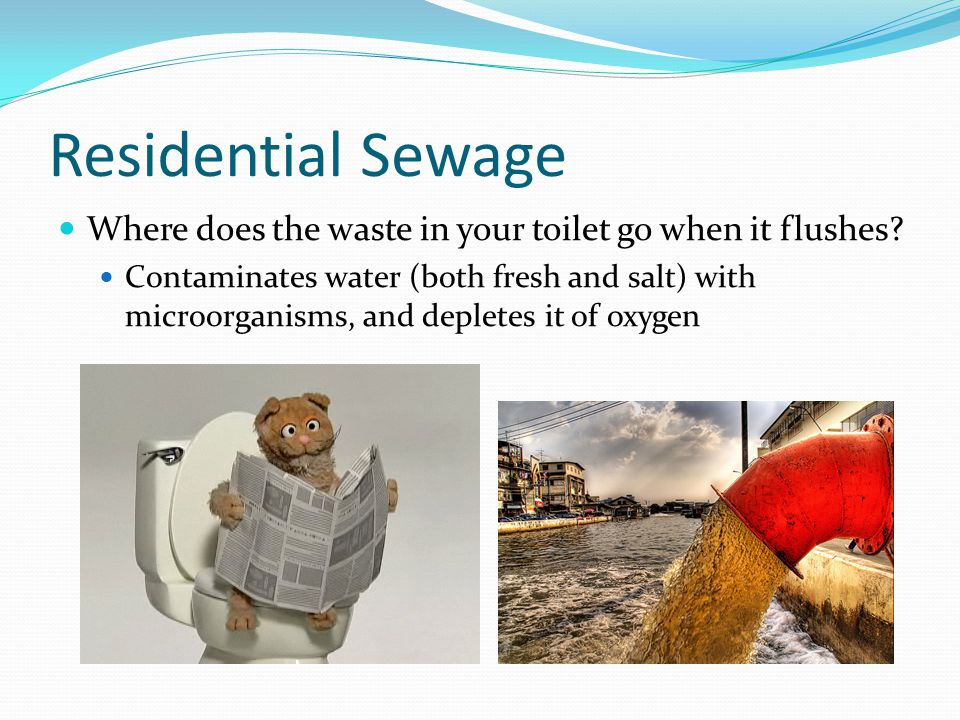 Residential Sewage Where does the waste in your toilet go when it flushes