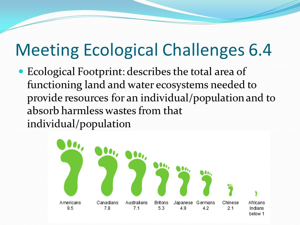 Meeting Ecological Challenges 6.4