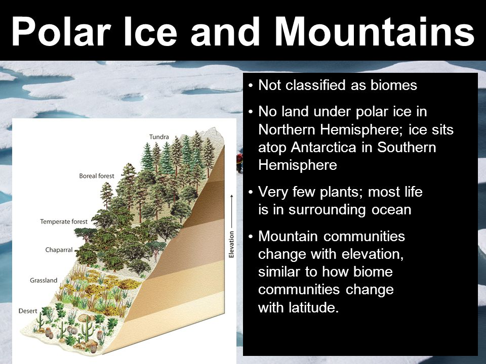 Polar Ice and Mountains