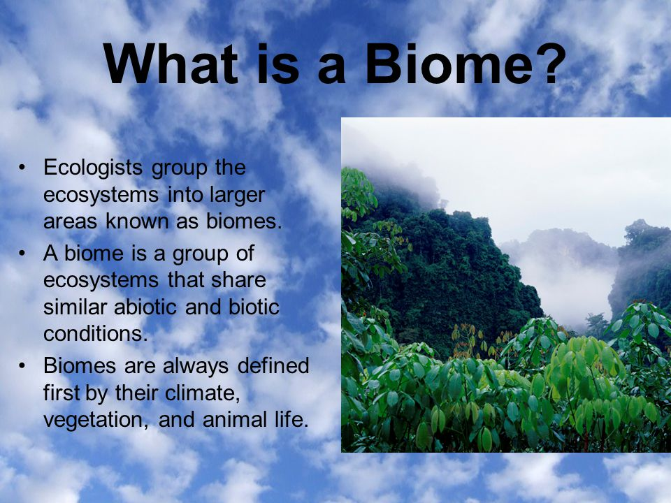 What is a Biome Ecologists group the ecosystems into larger areas known as biomes.