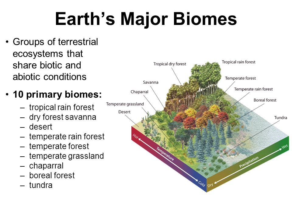 Earth's Major Biomes Groups of terrestrial ecosystems that share biotic and abiotic conditions. 10 primary biomes: