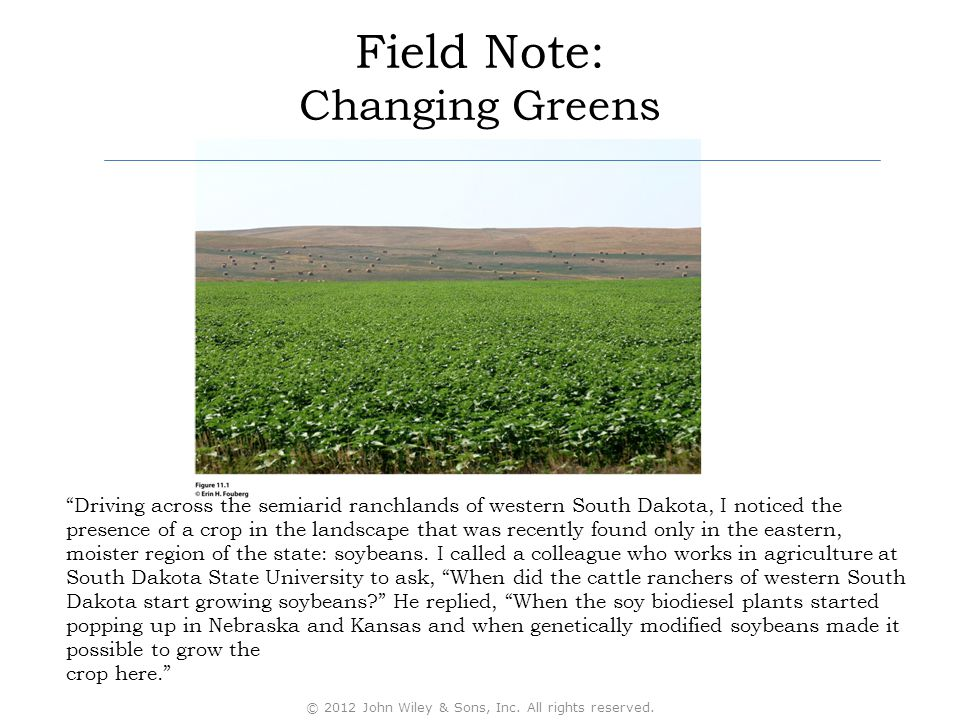 Field Note: Changing Greens
