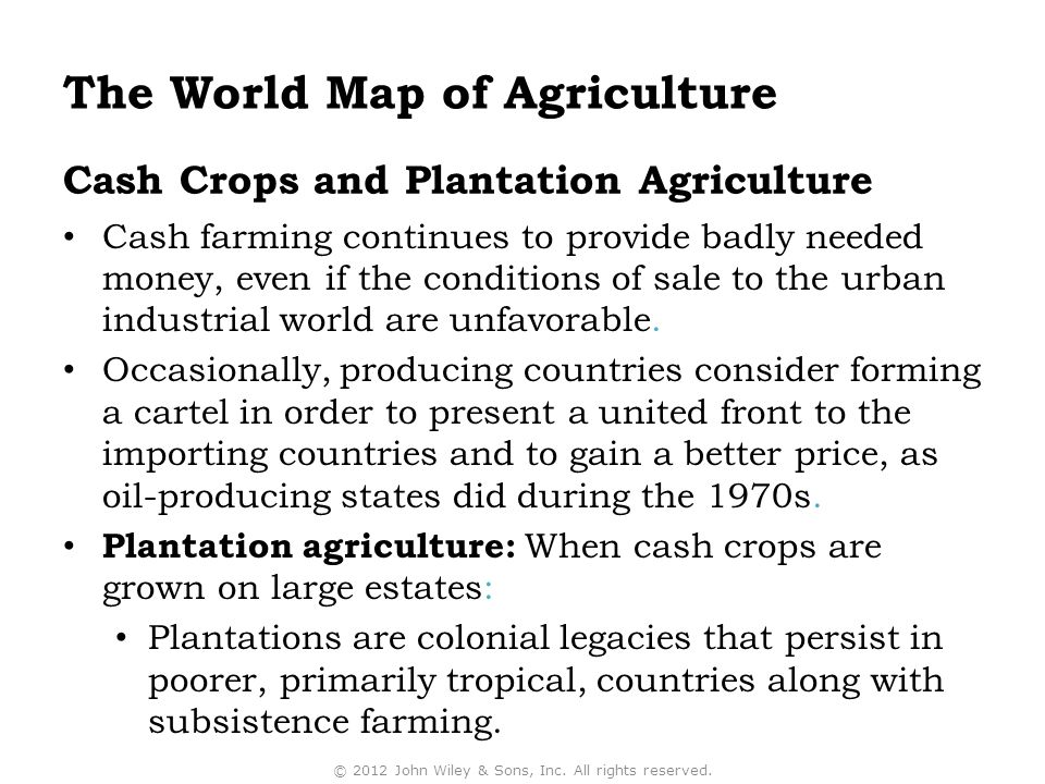 Cash Crops and Plantation Agriculture