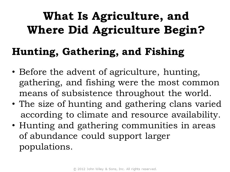 What Is Agriculture, and Where Did Agriculture Begin