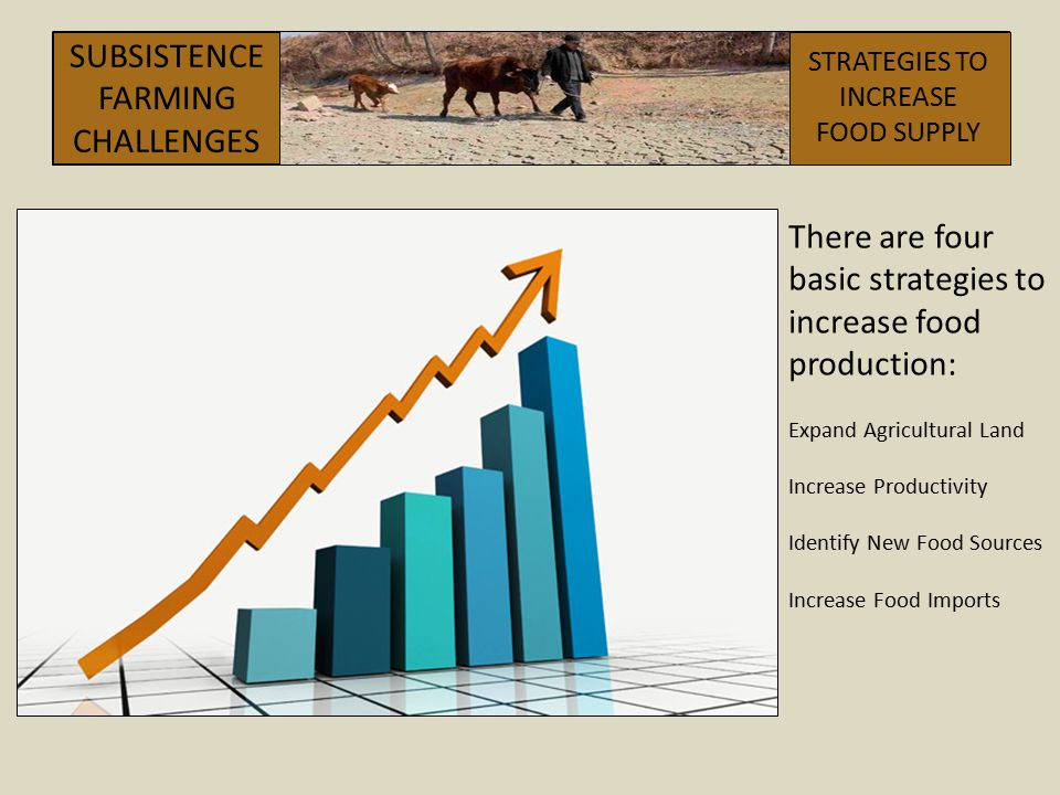 There are four basic strategies to increase food production: