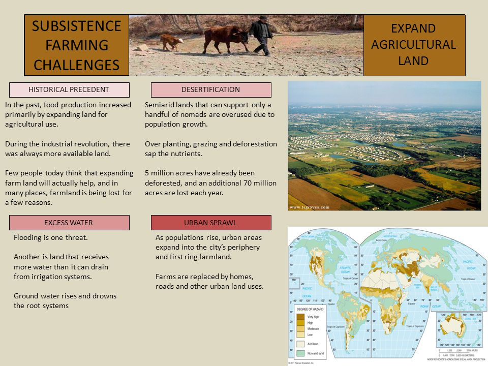 SUBSISTENCEFARMING CHALLENGES EXPAND AGRICULTURAL LAND