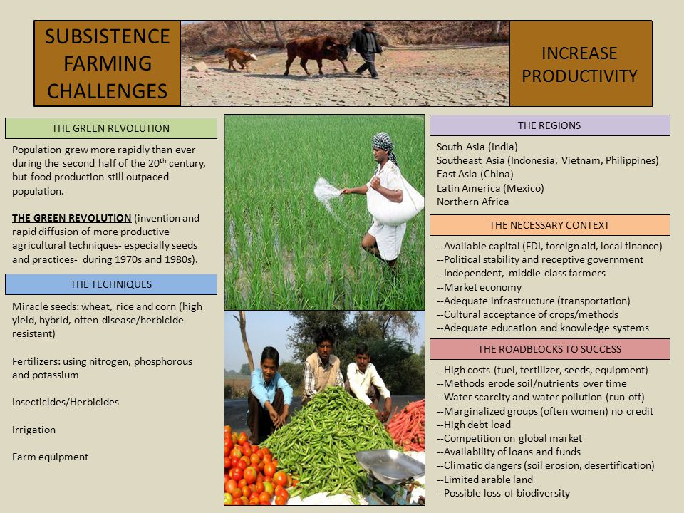 SUBSISTENCEFARMING CHALLENGES INCREASE PRODUCTIVITY THE REGIONS