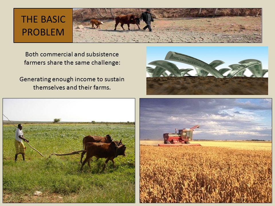 THE BASIC PROBLEM. Both commercial and subsistence farmers share the same challenge: