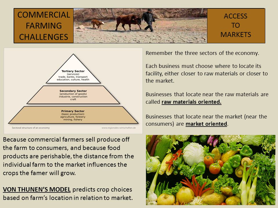 COMMERCIAL FARMING CHALLENGES ACCESS TO MARKETS