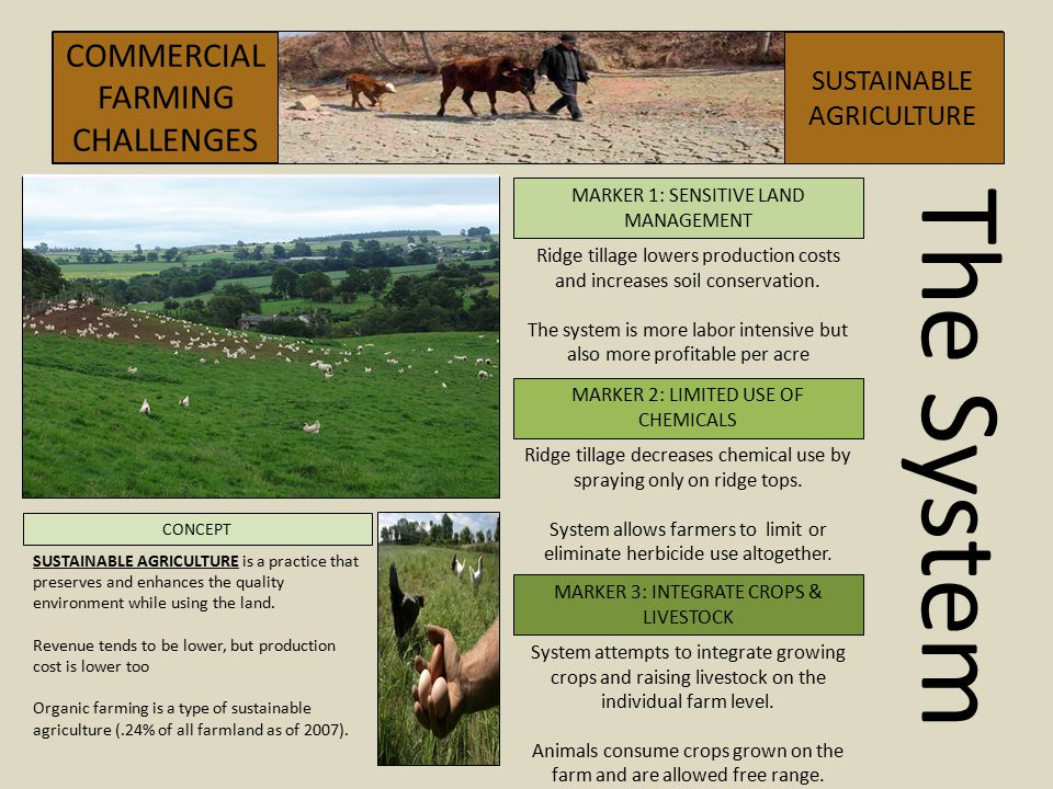 The System COMMERCIAL FARMING CHALLENGES SUSTAINABLE AGRICULTURE