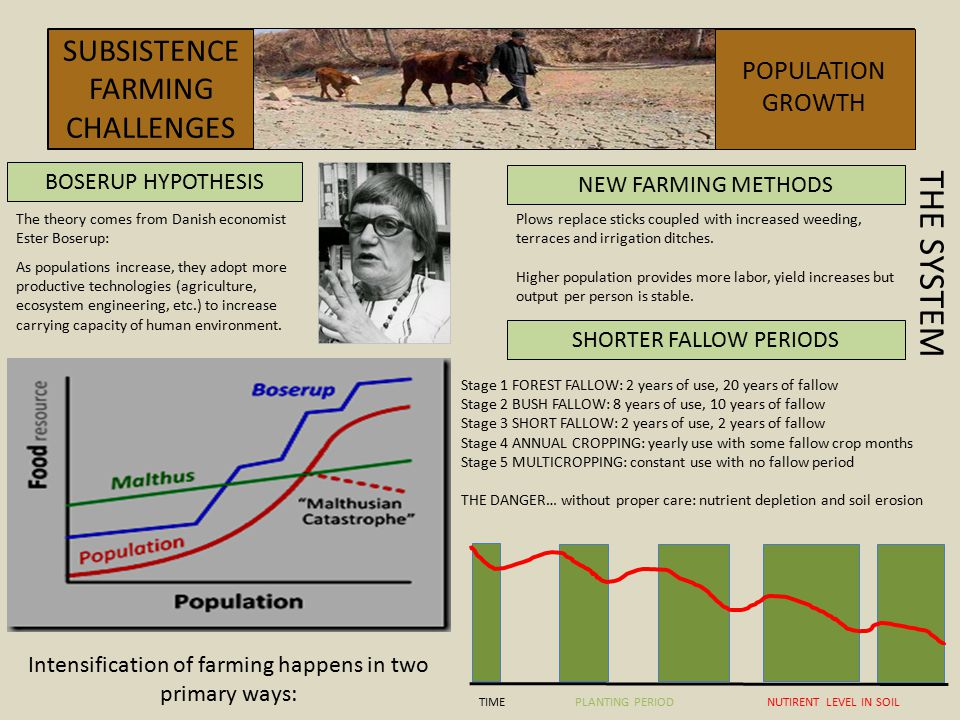 THE SYSTEM SUBSISTENCEFARMING CHALLENGES POPULATION GROWTH