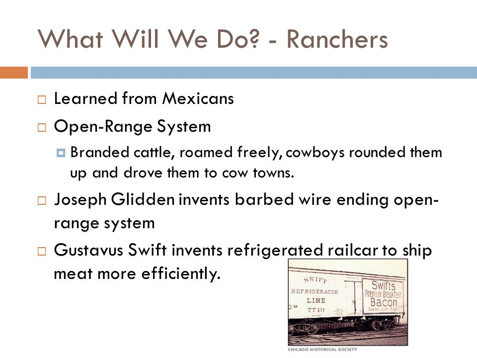 What Will We Do - Ranchers