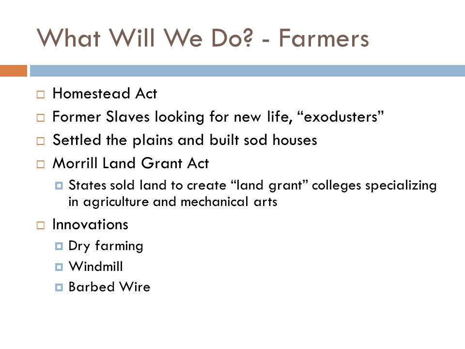 What Will We Do - Farmers