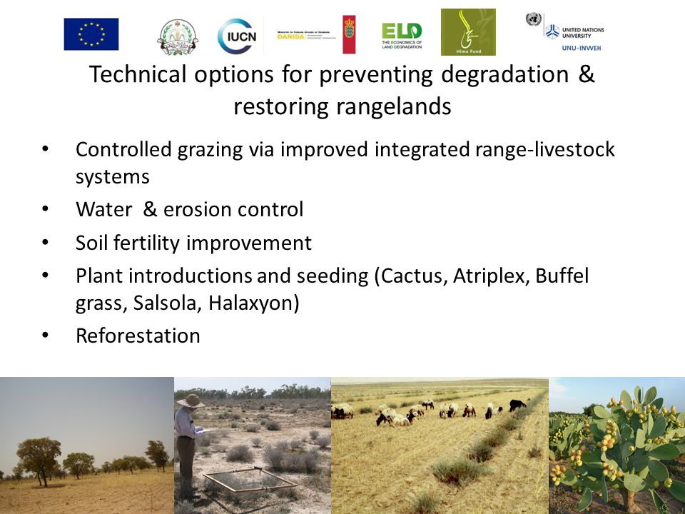 Technical options for preventing degradation & restoring rangelands