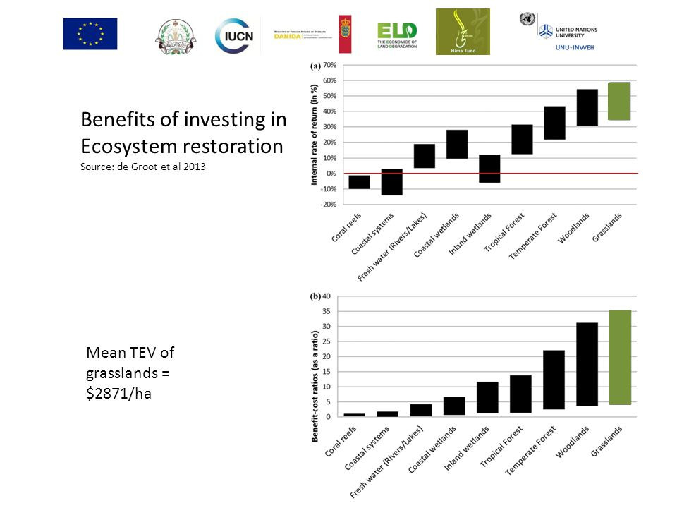 Benefits of investing in Ecosystem restoration
