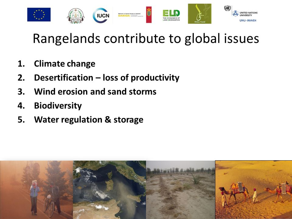 Rangelands contribute to global issues