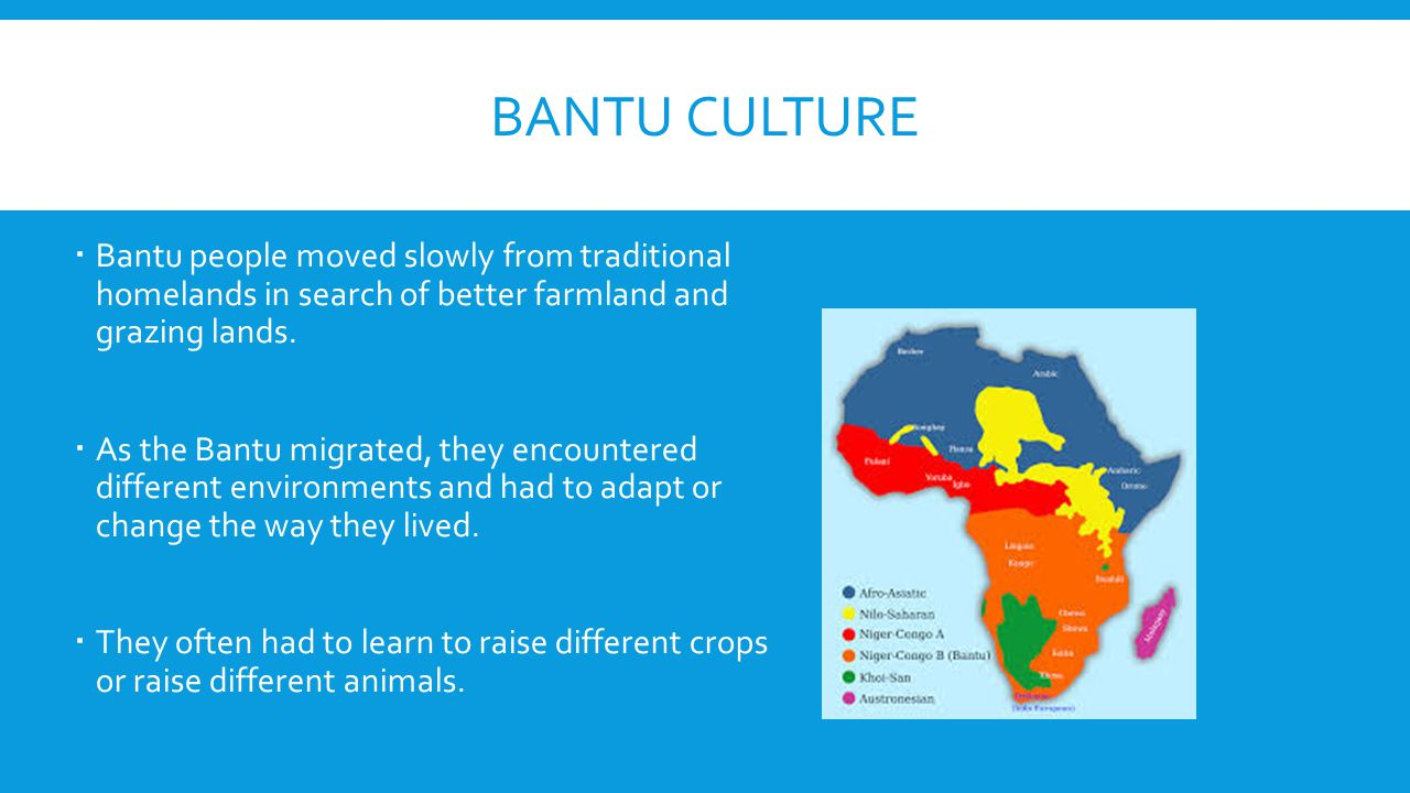 Bantu Culture Bantu people moved slowly from traditional homelands in search of better farmland and grazing lands.