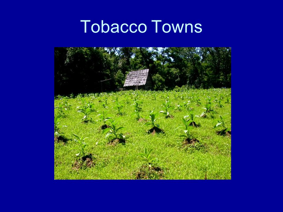 Tobacco Towns