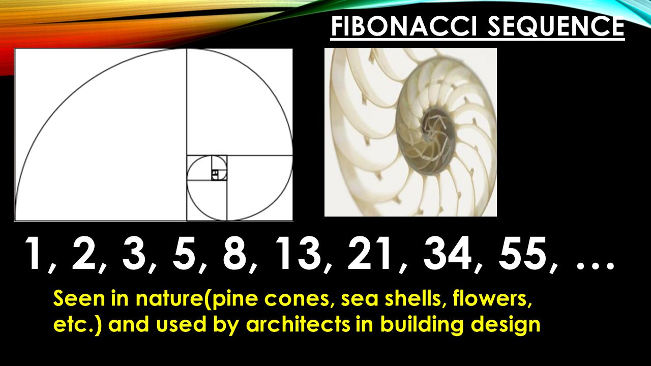 Fibonacci Sequence 1, 2, 3, 5, 8, 13, 21, 34, 55, … Seen in nature(pine cones, sea shells, flowers, etc.) and used by architects in building design.