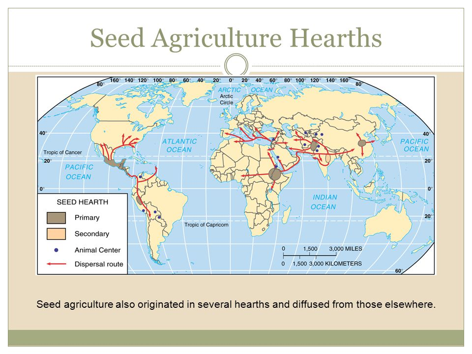 Seed Agriculture Hearths