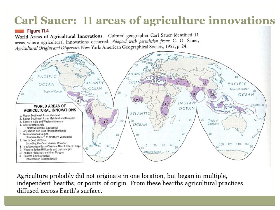 Carl Sauer: 11 areas of agriculture innovations
