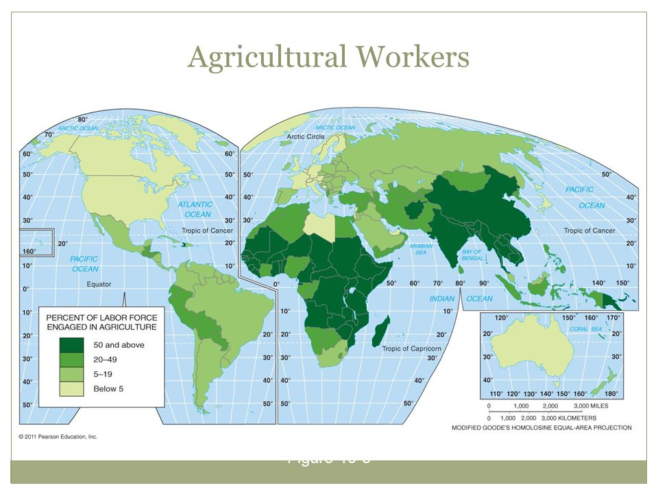 Agricultural Workers Figure 10-5
