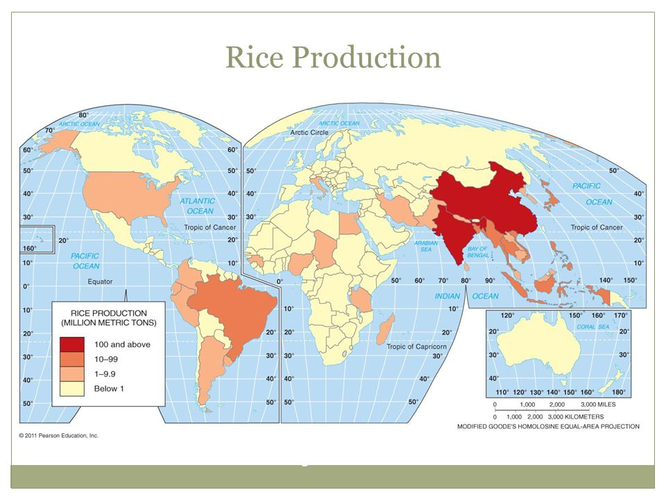 Rice Production Figure 10-12