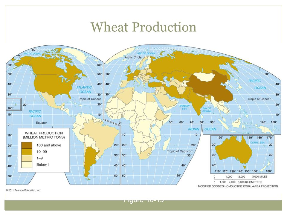 Wheat Production Figure 10-19